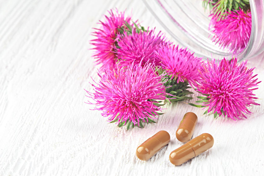 ReNue Rx Silymarin The Antioxidant Benefits Of Milk Thistle For Your Liver